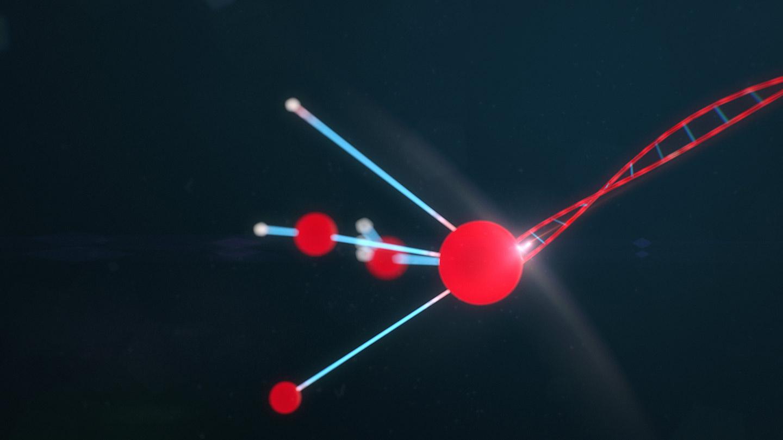 geroldbrunner-motion-deisgn-marantec-impact